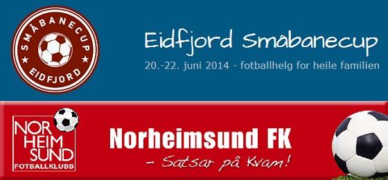eidfjord småbanecup